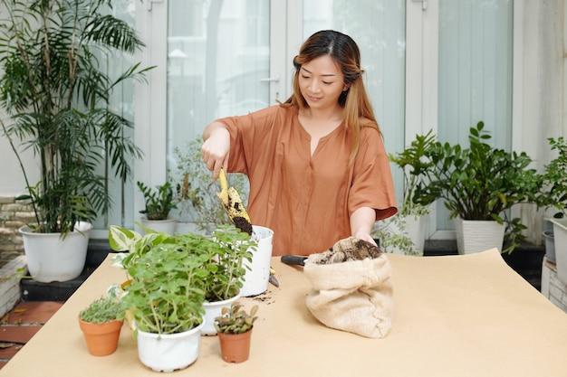 Les jolies plantes femelles adorent rempoter les fleurs sur des pots plus grands