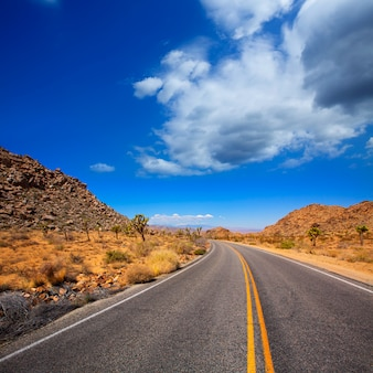 Joshua tree boulevard road dans la vallée du yucca en californie