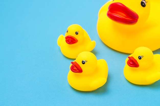 Jouet en caoutchouc de couleur jaune mama-canard et petits canetons sur fond bleu. le concept de soins maternels et d'amour pour les enfants, l'éducation et l'éducation des enfants