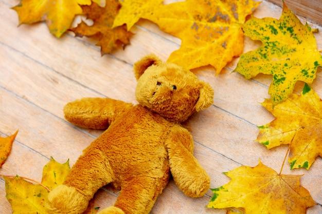 Jouet ours en peluche sur une table avec des feuilles autour.