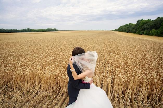 Jour de mariage. heureux jeunes mariés à l'extérieur. mariés, baisers, plein air, sur, champ blé