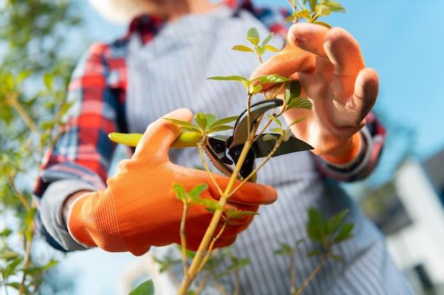 Jour parfait. femme agréable inspirée se sentant bien tout en travaillant dans le jardin