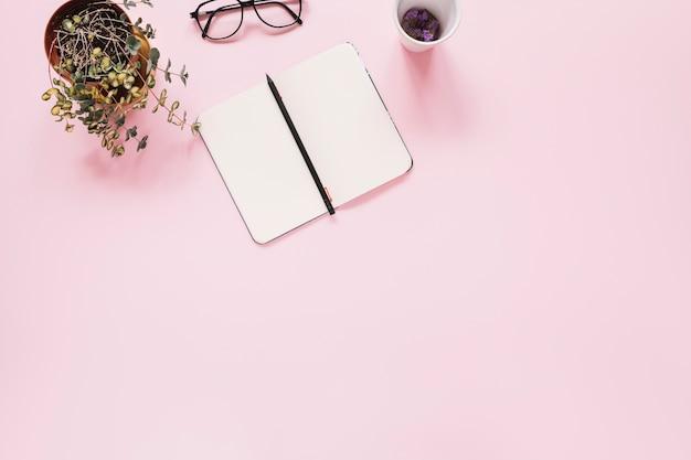 Un journal intime ouvert et un stylo sur fond rose avec du showplant