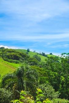 Journée ensoleillée de colline verte et ciel bleu au brésil vertical