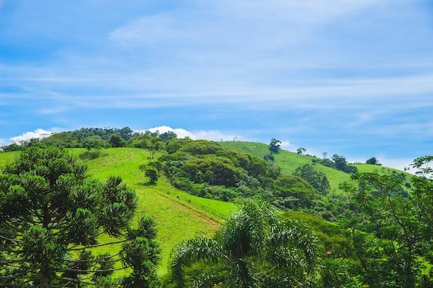 Journée ensoleillée de colline verte et ciel bleu au brésil
