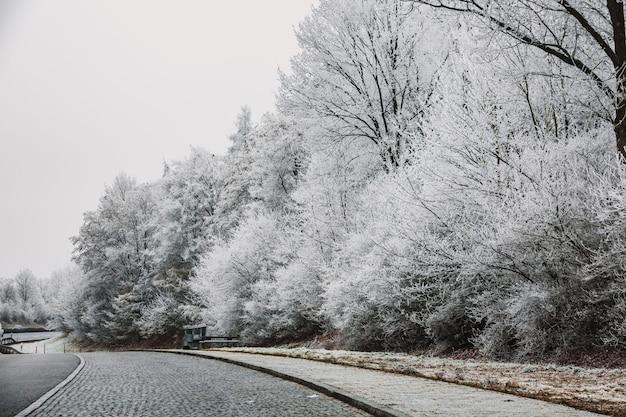 Journée d'hiver à munich