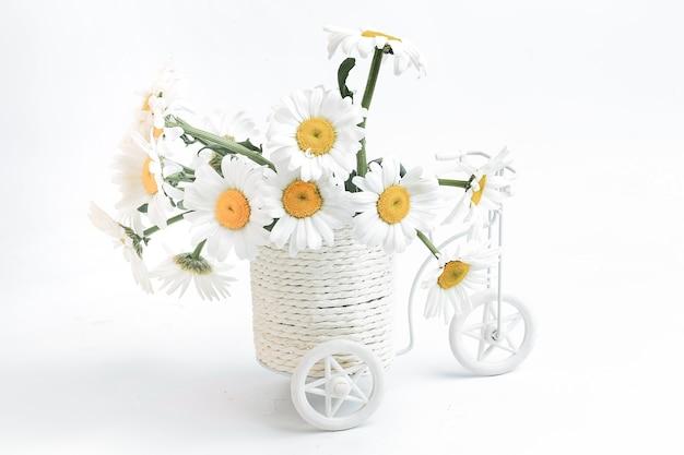 Journée sans voiture concept écologique vélos et plantes contre la pollution du monde vélo blanc...