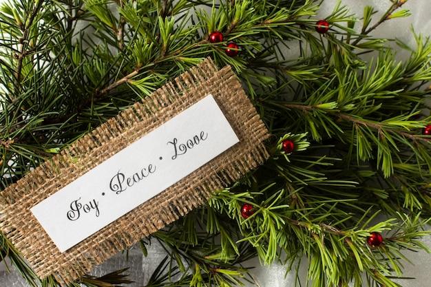 Joy peace peace lettrage sur des branches d'arbres