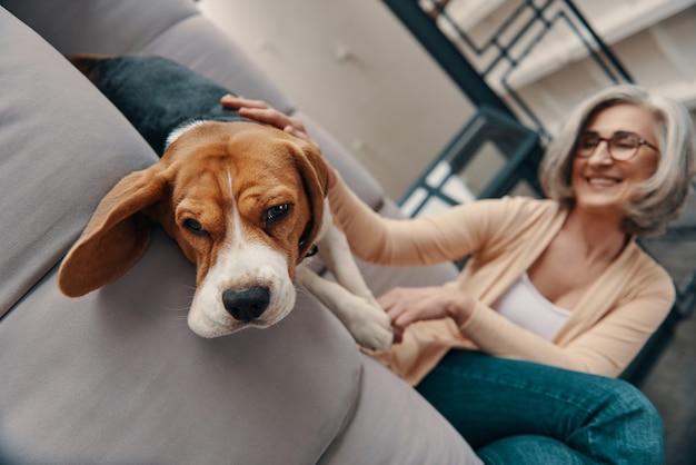 Joyeuse femme âgée en vêtements décontractés passant du temps avec son chien assis sur le canapé à la maison