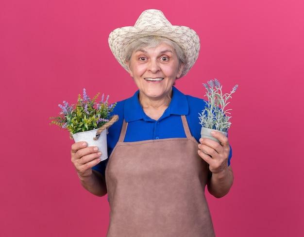 Joyeuse jardinière âgée portant un chapeau de jardinage tenant des pots de fleurs isolés sur un mur rose avec espace pour copie
