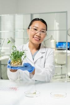 Joyeuse jeune femme gantée de laboratoire ou chercheuse scientifique qui vous regarde tout en tenant une boîte de pétri avec des pousses de soja vertes cultivées en laboratoire