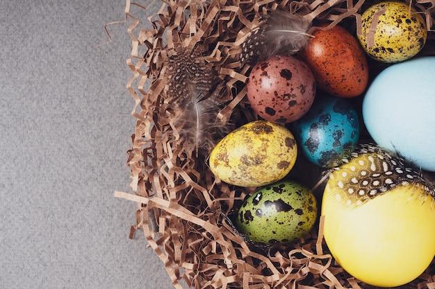 Joyeuses pâques. fond de pâques de félicitations lumineux. vue de dessus, mise à plat. oeufs de pâques colorés et plumes dans un nid sur fond gris, gros plan.