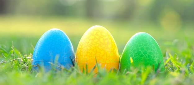 Joyeuses pâques avec un joli lapin d'oeufs colorés le matin, drôle de décoration dans l'herbe printemps