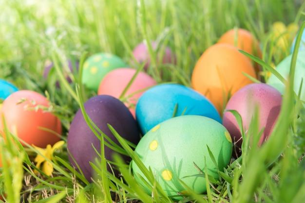 Joyeux coloré pâques dimanche chasse décorations de vacances fond de concept de pâques