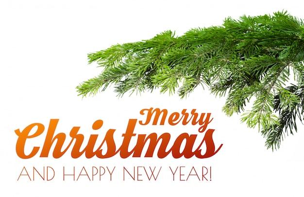 Joyeux noël et nouvel an fond avec branche de sapin