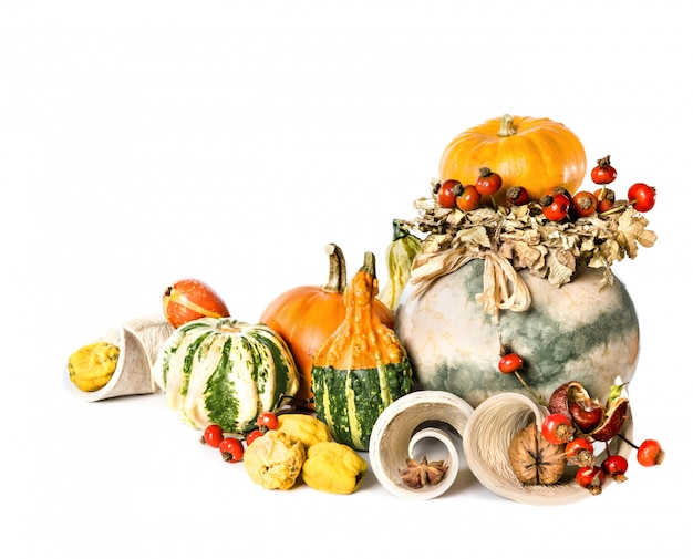 Joyeux thanksgiving sur blanc