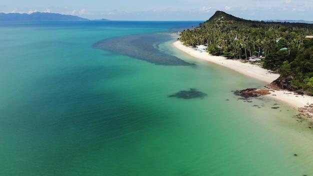 Jungle verte et plage de galets près de la mer