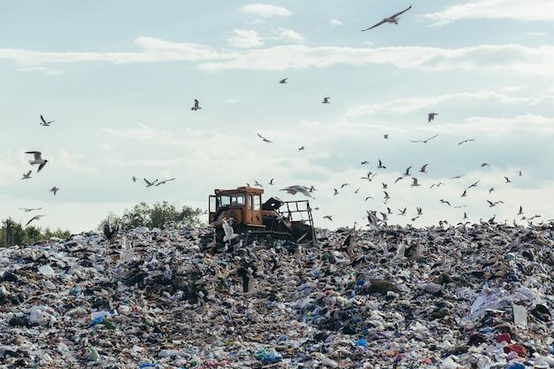 Junkyard d'ordures ménagères en décharge