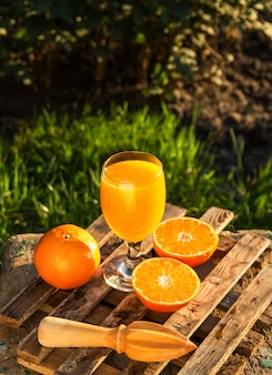 Jus d'agrumes. jus de mandarine.