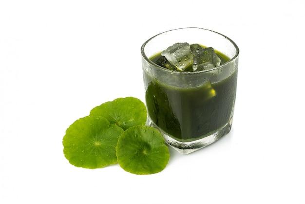 Jus de gotu kola, feuille de feuilles de plantes asiatiques, hydrocotyle indien, centella asiatica