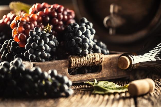 Juste des raisins mûrs placés en vrac dans une caisse en bois, au fond un tonneau de vin et une bouteille de vin rouge.