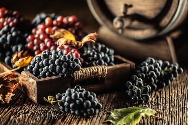 Juste des raisins mûrs placés en vrac dans une caisse en bois, au fond un tonneau de vin.
