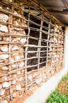 Kenya, ville de malindi. détail de la technique traditionnelle pour construire des maisons pauvres