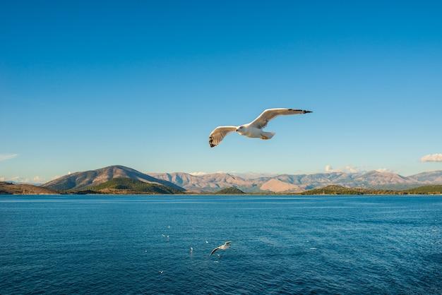 Kerkyra corfou ville sur l'île de corfou en mer ionienne grèce