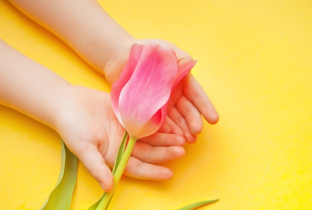 Kid bébé fille tenant une tulipe rose dans les mains sur la surface jaune. pâques, fête des mères. concept de printemps.