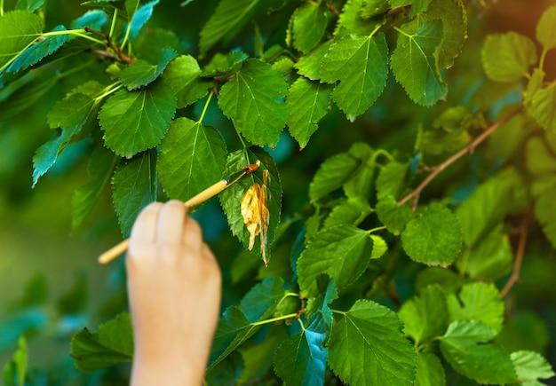Kid peignant sur des feuilles