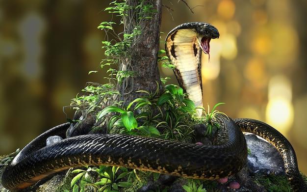 King cobra le plus long serpent venimeux du monde dans la jungle avec un tracé de détourage, king cobra snake