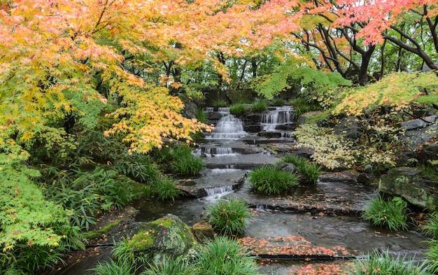 Kokoen, jardin japonais traditionnel en automne à himeji, au japon