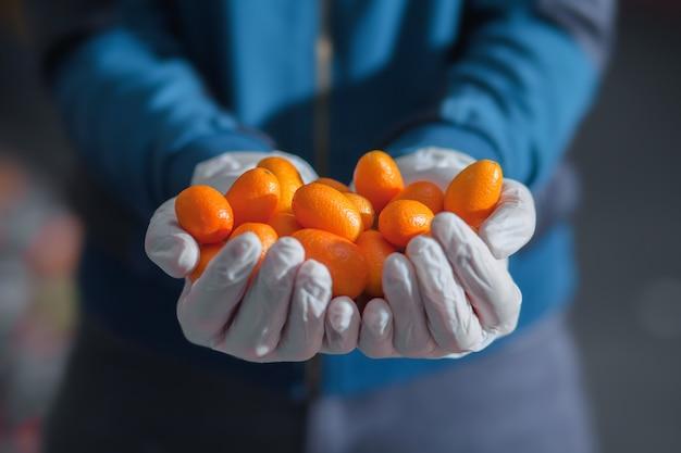 Kumquat frais dans des paumes gantées au marché aux légumes. concept de nourriture saine.