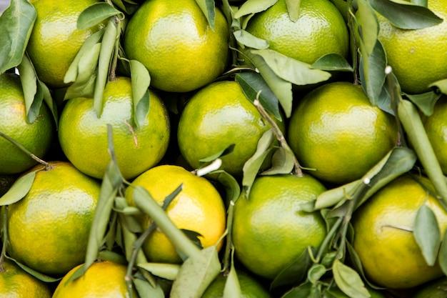 Kumquats sur le marché