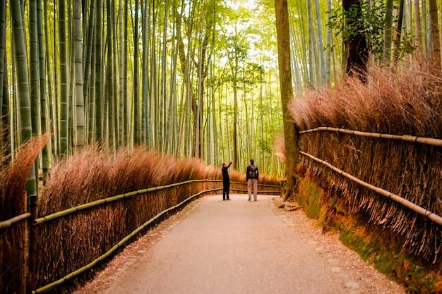 Kyoto, japon - 12 novembre: le chemin vers la forêt de bambous à kyoto, au japon, en novembre 2015. kyoto est l'une des destinations touristiques les plus célèbres au japon.