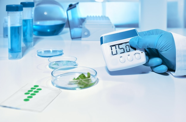 Laboratoire biologique ou biochimique, gros plan sur une main gantée tenant une minuterie numérique