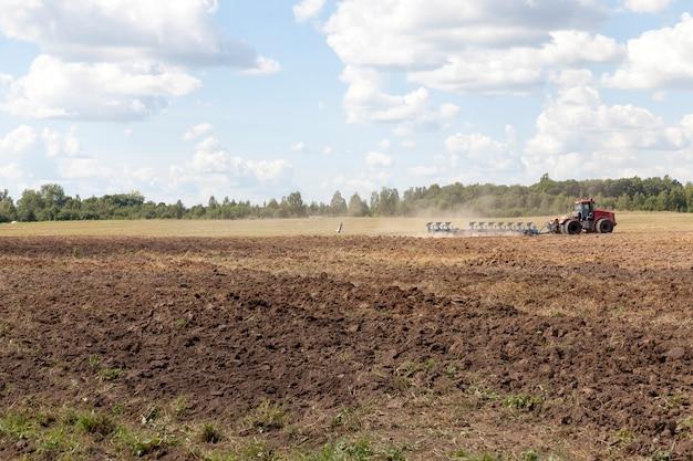 Labourer un champ agricole sur le sol duquel se reposent des cigognes et mangent creusé par la charrue de vers