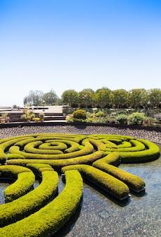 Labyrinthe de jardin merveilleux pendant une journée ensoleillée