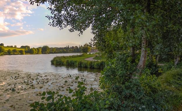 Lac avec des arbres au coucher du soleil