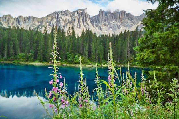 Lac carezza aux eaux cristallines