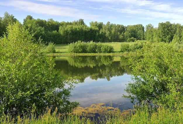 Lac dans la forêt en été la surface de l'eau avec le reflet des arbres verts sous