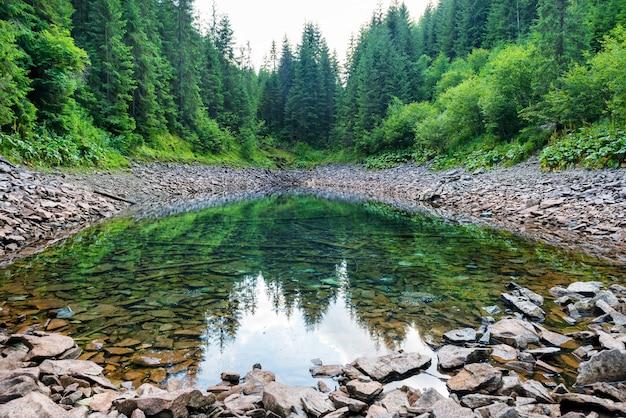 Lac dans les montagnes aux eaux claires entouré d'une forêt verte