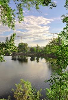Lac dans la ville à travers les branches