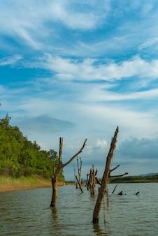 Lac d'eau douce avec un ciel bleu