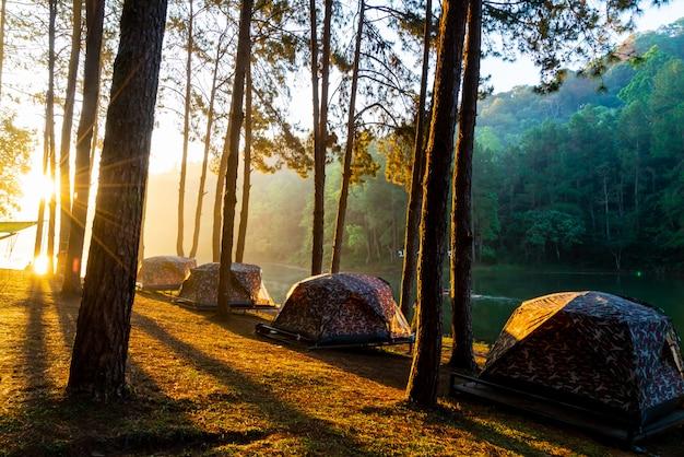 Lac et forêt au lever du soleil