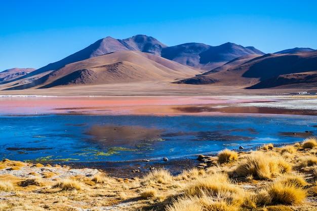 Lac laguna colorada