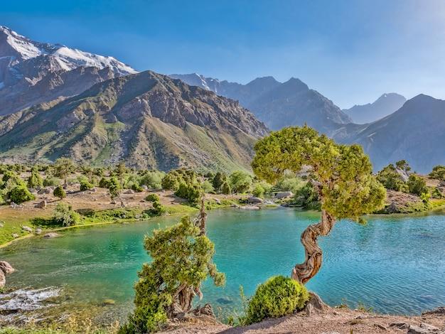 Lac de montagne aux eaux turquoises et un genévrier au soleil sur un fond de montagne rocheuse. montagnes fann, tadjikistan, asie centrale