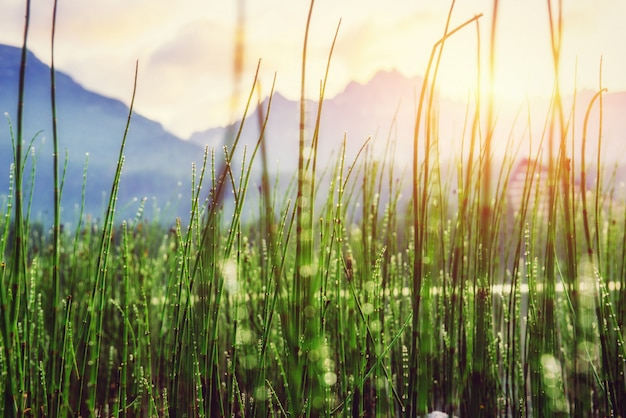 Lac de montagne majestueux dans le parc national des hautes tatras.