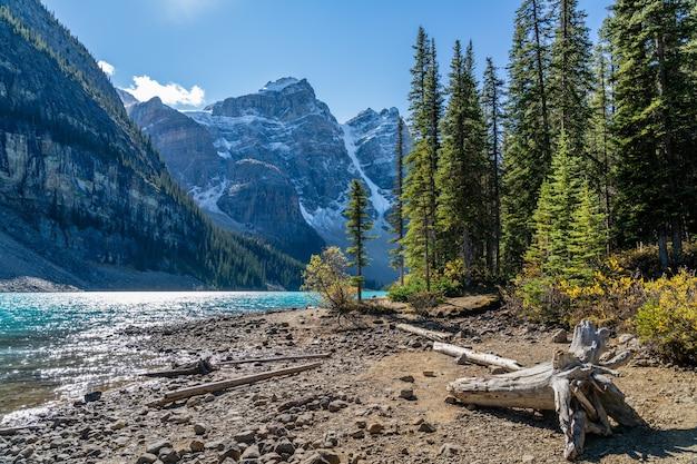 Lac moraine beau paysage en été journée ensoleillée matin. parc national de banff, rocheuses canadiennes, alberta, canada