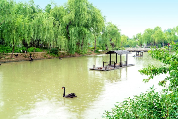 Lac de l'ouest élancé, yangzhou, chine